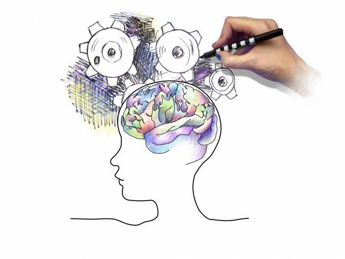 3 dicas de neurociência para aumentar as vendas
