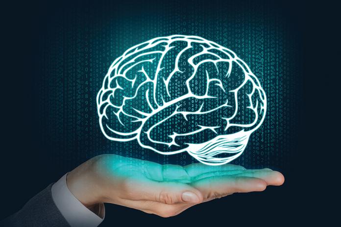 Como o cérebro escolhe como aprender.